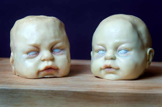 Baby_heads